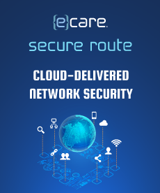 Cloud Delivered Network Security3