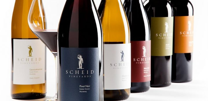 Harvesting the Potential of Scheid Vineyards